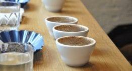5 Consejos para Empezar una Carrera en la Industria del Café