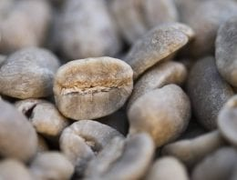 Roaster Basics: How to Roast Hard & Soft Beans