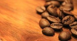 Roaster VIDEO Hack: 1 DIY Way to Measure Coffee Bean Density