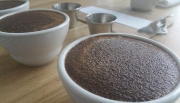 Cupping Coffee: A VIDEO Guide to Being a Q-Grader