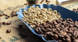 The Science Behind Coffee Roasting in Just 150 Seconds