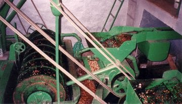 VIDEO: What Is Washed Coffee Processing?