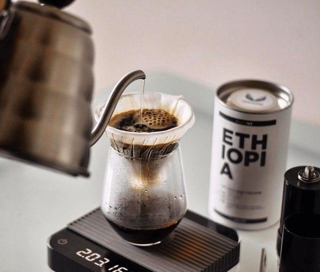 preparando cafe en una v60