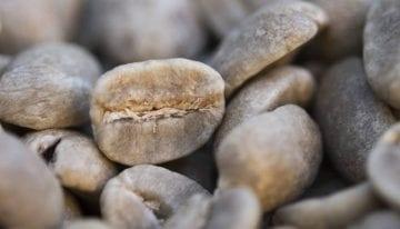 Aspectos Básicos del Tueste: Cómo Tostar Granos Duros y Granos Semiduros