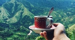 Toraja: The Origin That Will Make You Rethink Indonesian Coffee