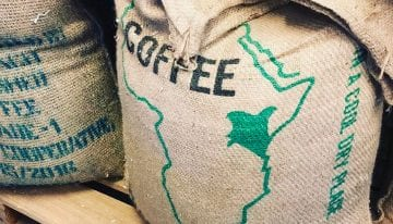 How Micro-Cooperatives Are Transforming The Kenyan Coffee Trade