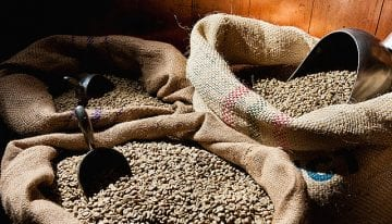 VIDEO Guide: What Is Coffee & How Is It Processed?