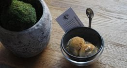 Cascara Sorbet & Other Inventive Cascara Desserts