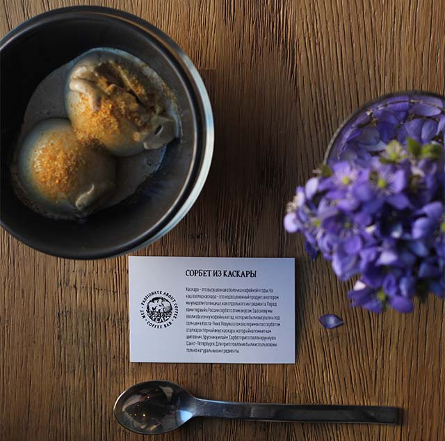 cascara sorbet and plant