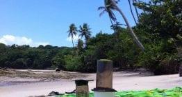 Turismo de Café: ¿Será la Experiencia Máxima del Origen?