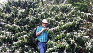 Rust-Resistant Coffee Variety Scores 90.5 Points in Nicaragua CoE