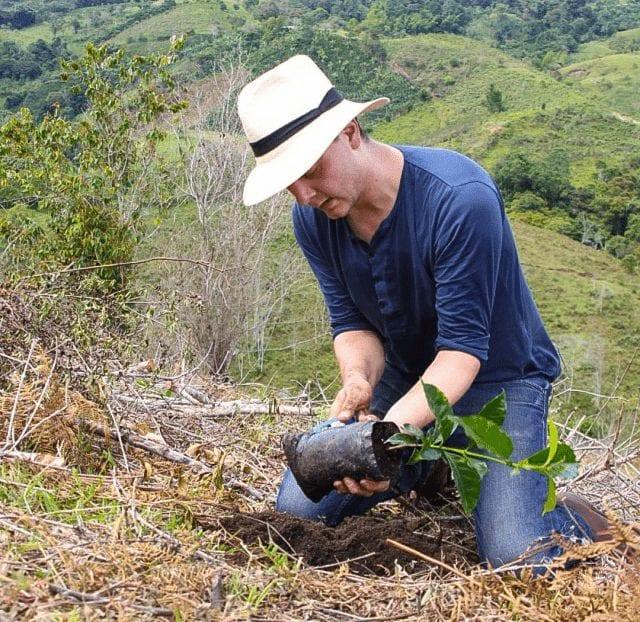 plantando cafe en finca