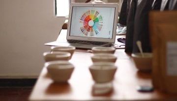 ¿Deberían ser Más Precisos Los Sabores de Café & Descriptores de Aroma?