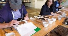 Negocio de Café: Cómo Mejorar la Rentabilidad & Reducir Riesgos