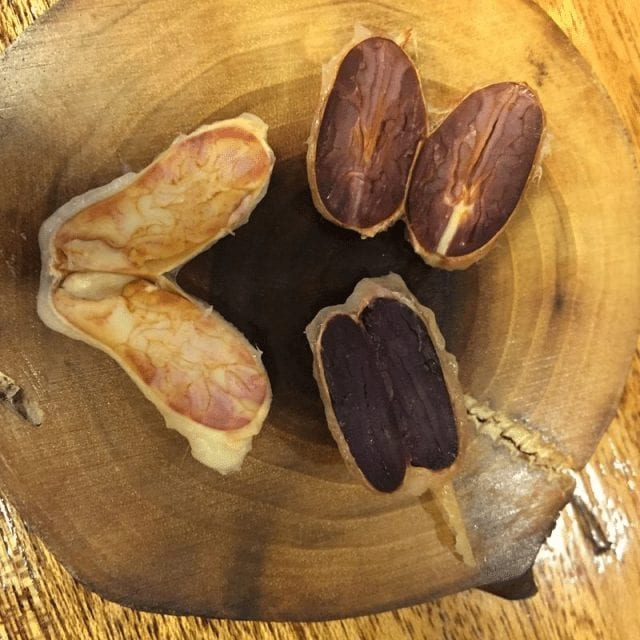 corte de cacao