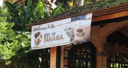 The Best of Panama: The History of a Specialty Coffee Auction
