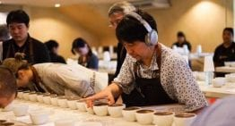 World Record Broke as Geisha Coffee Sells for US $601/lb