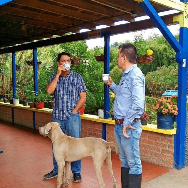 productores de cafe