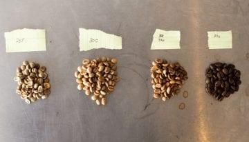 Efectivos Métodos de Experimentación para  los del Mundo del Café