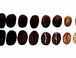 Maxwell Colonna-Dashwood: The Coffee Dictionary – An Extract