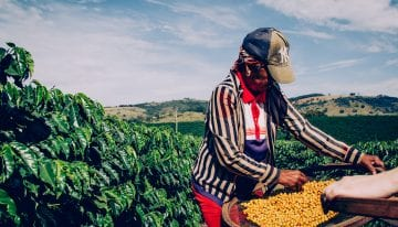 New Film Will Explore Brazil's Specialty Coffee Culture