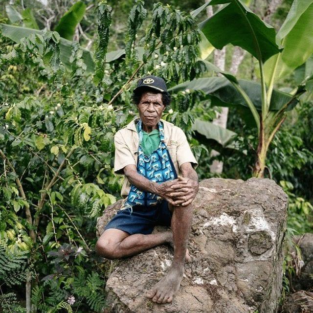 agricultor de papa nueva guinea