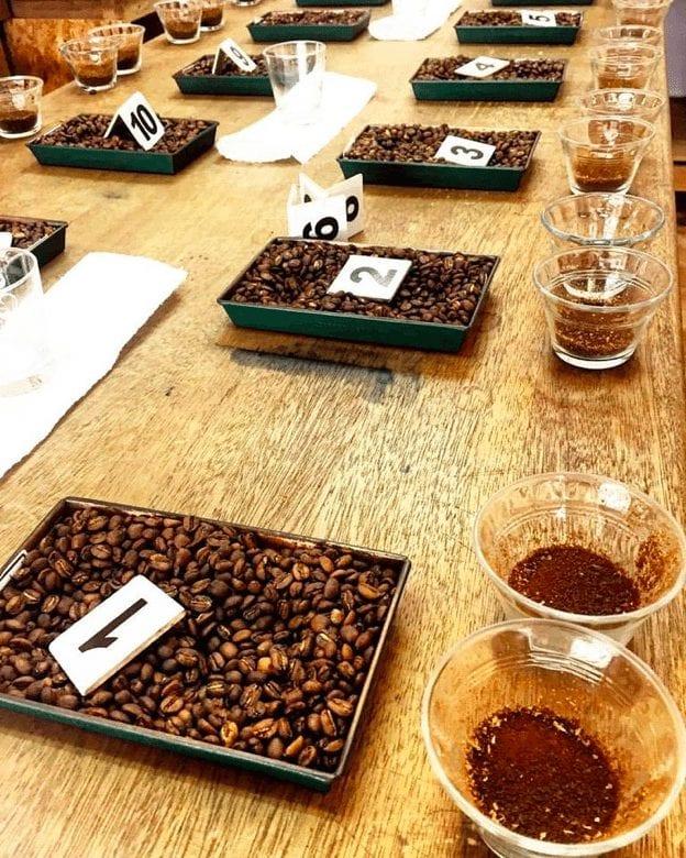 catacion en cafe galeano
