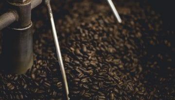 Clase Magistral de Tueste de Scott Rao: Cómo tostar Café de Especialidad