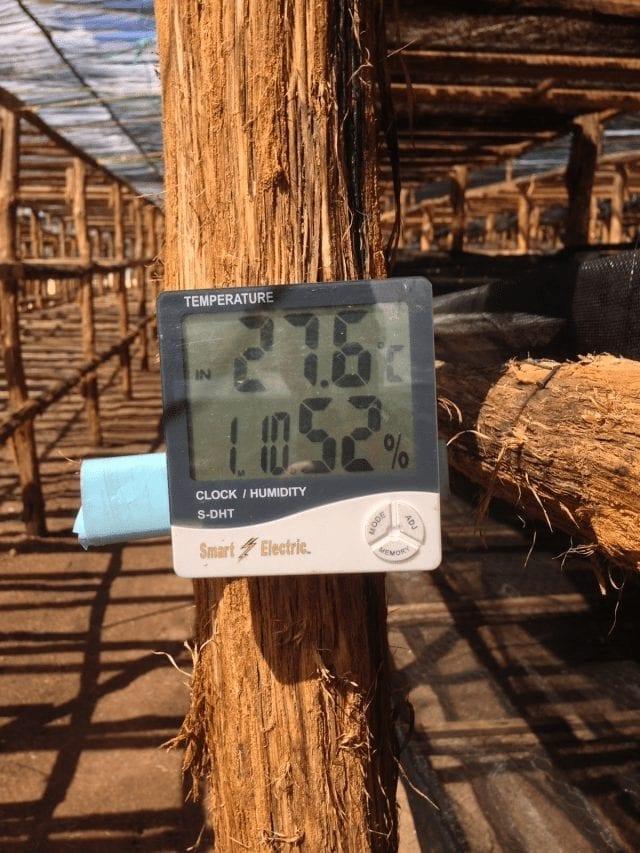 temperatura de secado