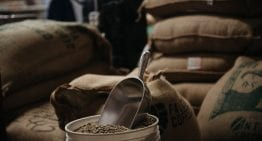 Coffee Guide: What Is Body? & How Do I Brew & Roast for It?