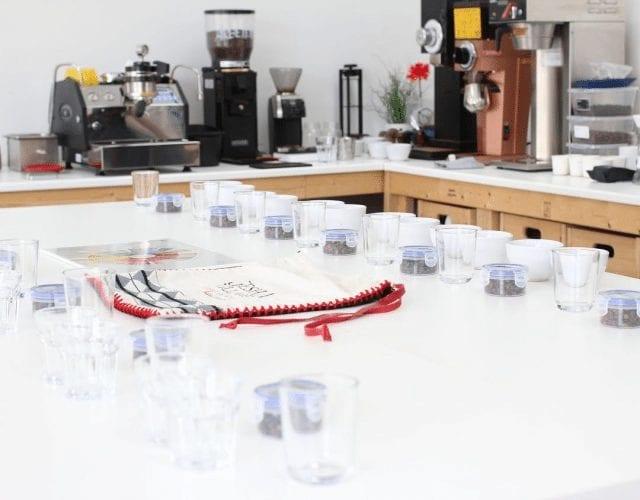 catando muestras de cafe