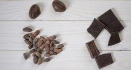 Guía de los Perfiles de Sabor del Cacao & Chocolate para Principiantes