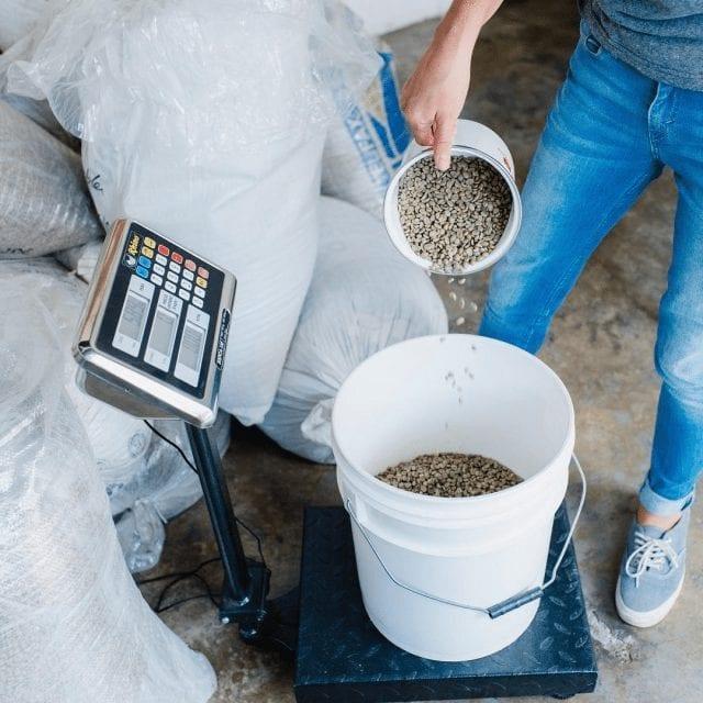 pesando cafe verde