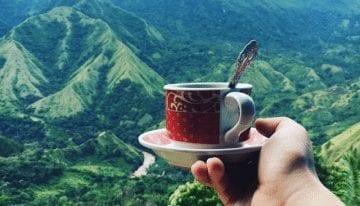 Toraja: el Origen que te Hará Replantear Sobre el Café de Indonesia