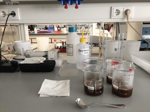 reproduccion de catacion de cafe