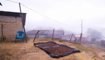 Creating Schools & Jobs in Honduras' Coffee-Farming Communities