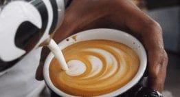 Cómo Seleccionar la Mejor Jarra de Leche para Hacer Arte Latte y Vaporizar