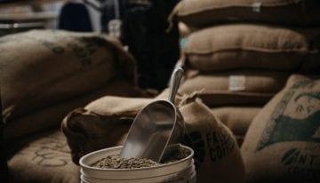 Guía del Café: ¿Qué es Cuerpo? ¿Cómo Tostar & Extraer para Obtenerlo?