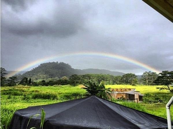 Paisaje en una finca en Hawaii