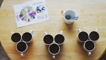 Coffee Science: Breaking Down Where Flavor Comes From