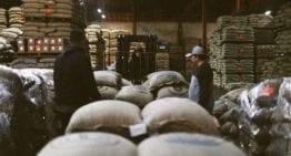 Glosario de Términos de Contrato para el Comprador de Café