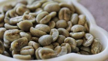 Bitterness in Coffee: What Is It & Is It Always Bad?