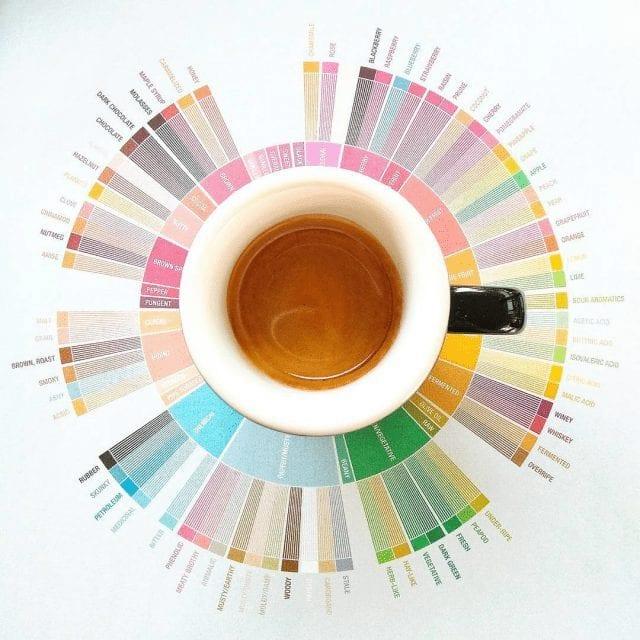 rueda de sabores del café