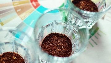 Coffee Tasting Exercises That Will Improve Your Palate