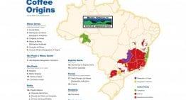 Guía Concisa de las Principales Regiones Productoras de Café en Brasil