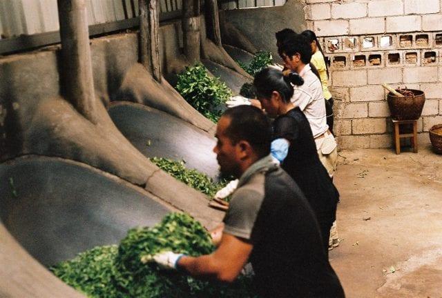 Roasting tea leaves