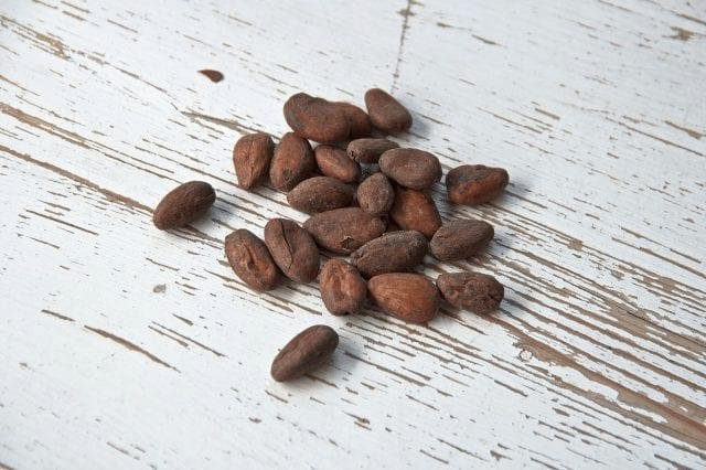 Grano de cacao