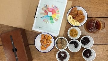 Coffee Cupping: How to Use Solutions to Improve Your Palate