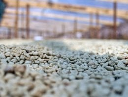 How to Protect Green Coffee From Excessive Water Activity