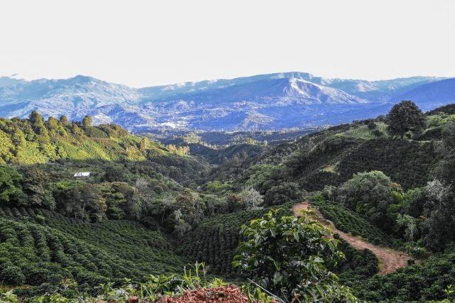 Vista de un paisaje